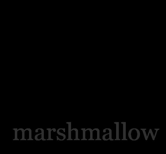 marshmallow docs